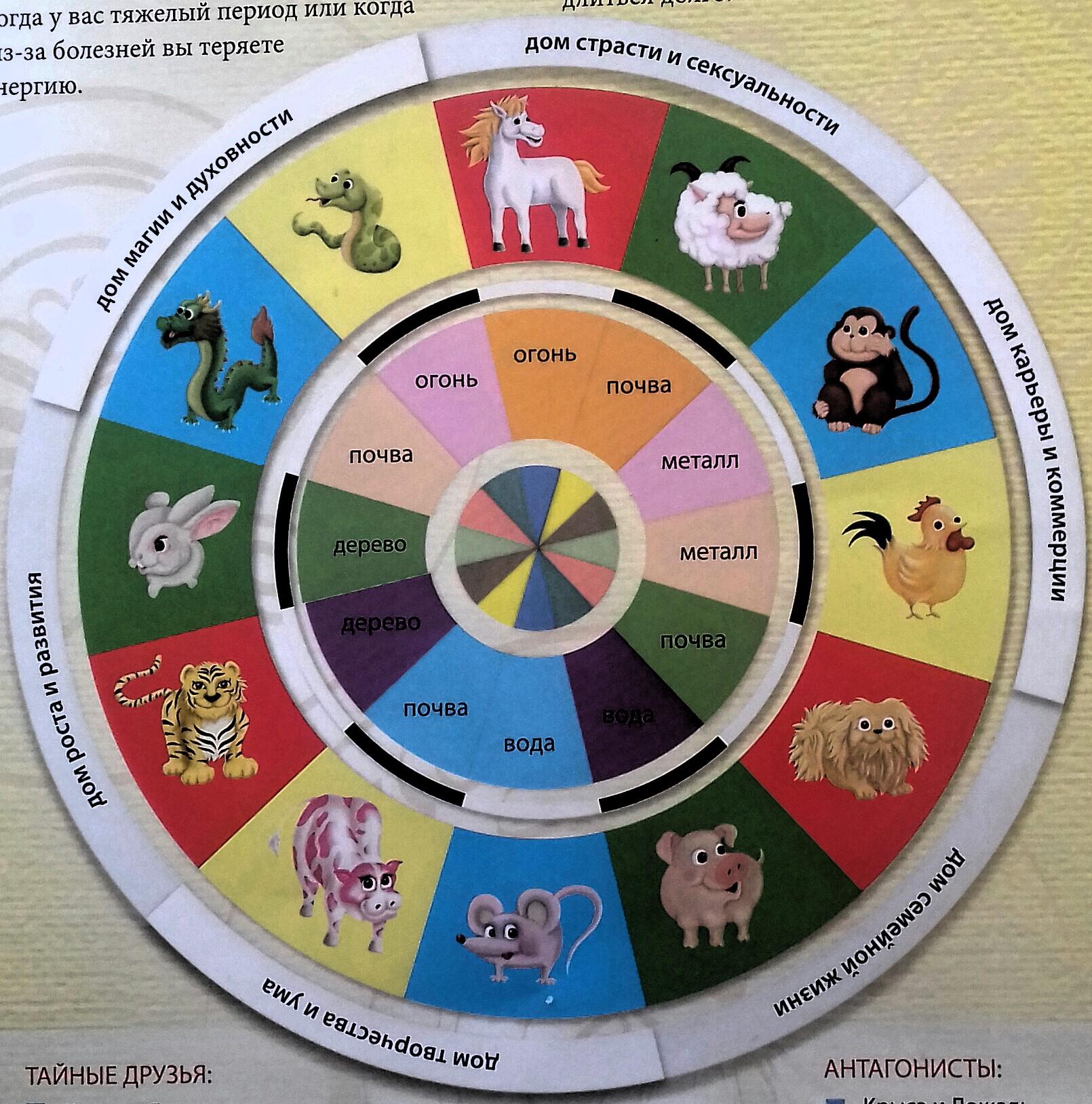 О  Китайском  гороскопе